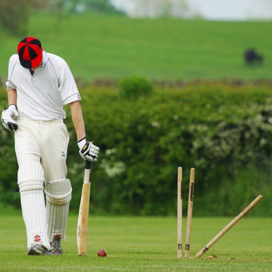 Cricket Stumps Ball Sport Match Wicket Cricketer